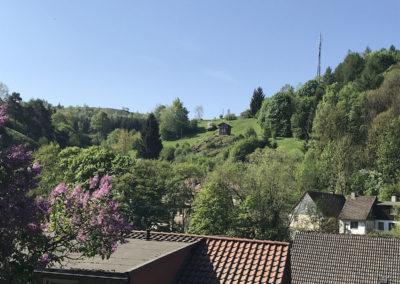 Ferienwohnung am Burgberg Rübeland1200-IMG_7691